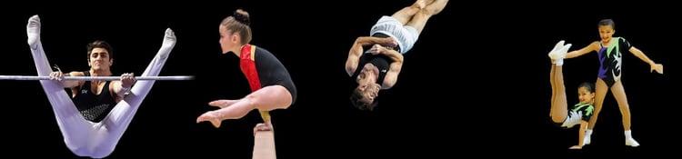 Gymnastics NZ Sport